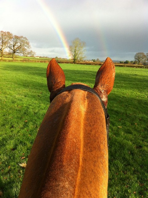 Horseback Rainbow